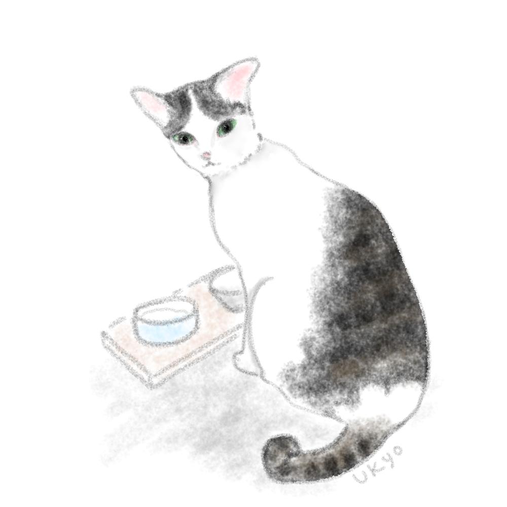 ごはん食べるとこ見ないの?illustration by Ukyo SAITO ©斎藤雨梟