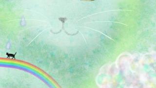 時の記念日、虹のドレス