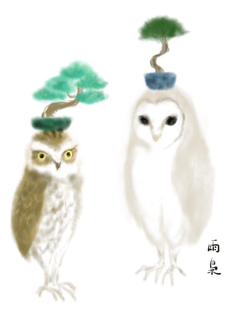 アナホリフクロウとメンフクロウ illustration by Ukyo SAITO ©斎藤雨梟