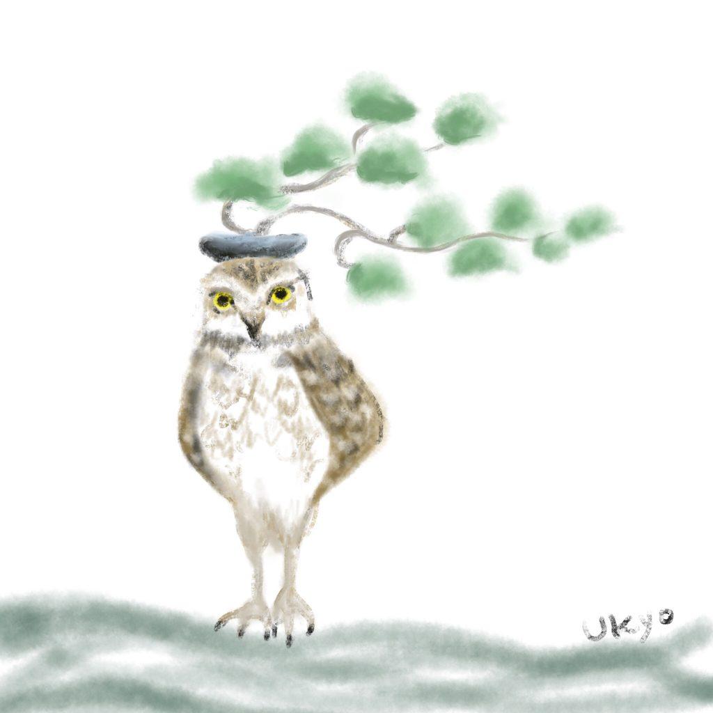 アナホリフクロウと盆栽 illustration by Ukyo SAITO ©斎藤雨梟